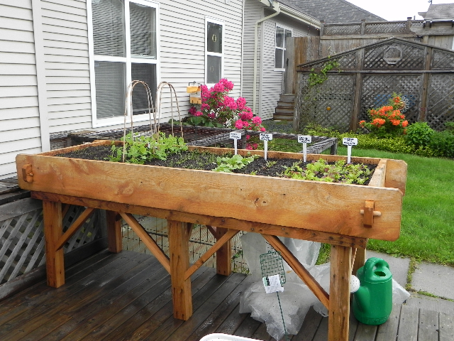 accessible-garden-bed